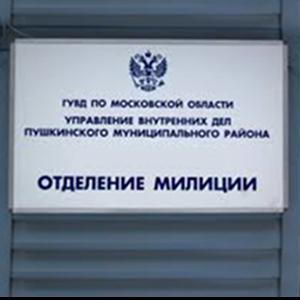 Отделения полиции Гусь Хрустального